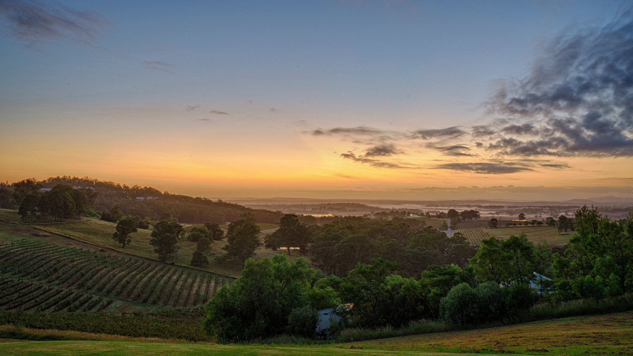 Hunter Valley Sunrise